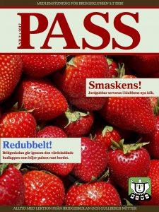 Pass_1702_web